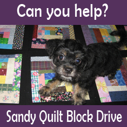 Sandy Quilt Block Drive