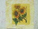 Sunflower Illustions