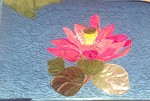 Lotus...National flower of India
