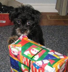 milo-presents