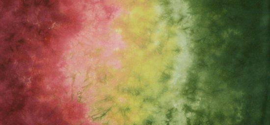 coleus-gradient